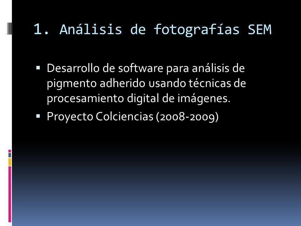 1. Análisis de fotografías SEM Desarrollo de software para análisis de pigmento adherido usando técnicas de procesamiento digital de imágenes. Proyect