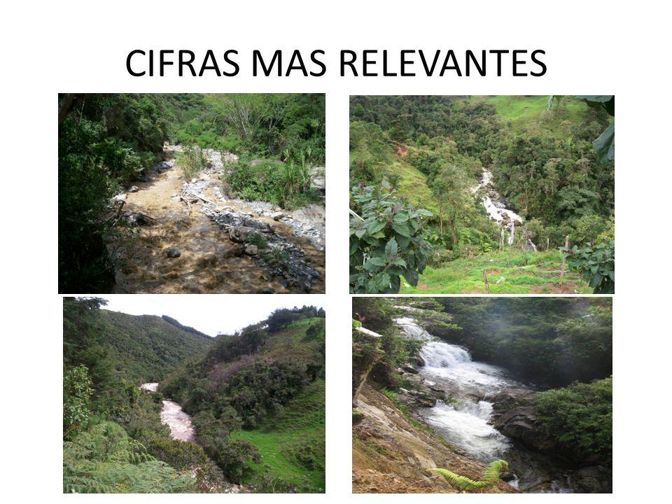 CIFRAS MAS RELEVANTES
