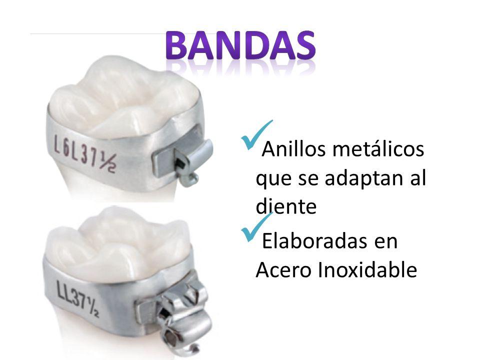Anillos metálicos que se adaptan al diente Elaboradas en Acero Inoxidable
