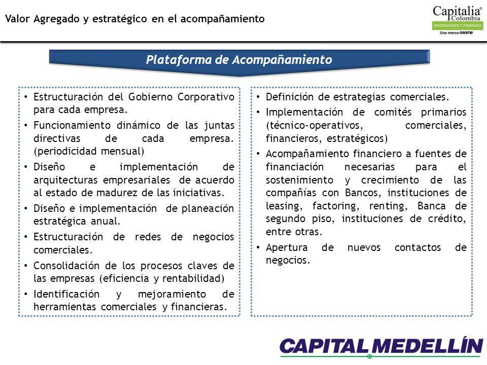 Estructuración del Gobierno Corporativo para cada empresa. Funcionamiento dinámico de las juntas directivas de cada empresa. (periodicidad mensual) Di