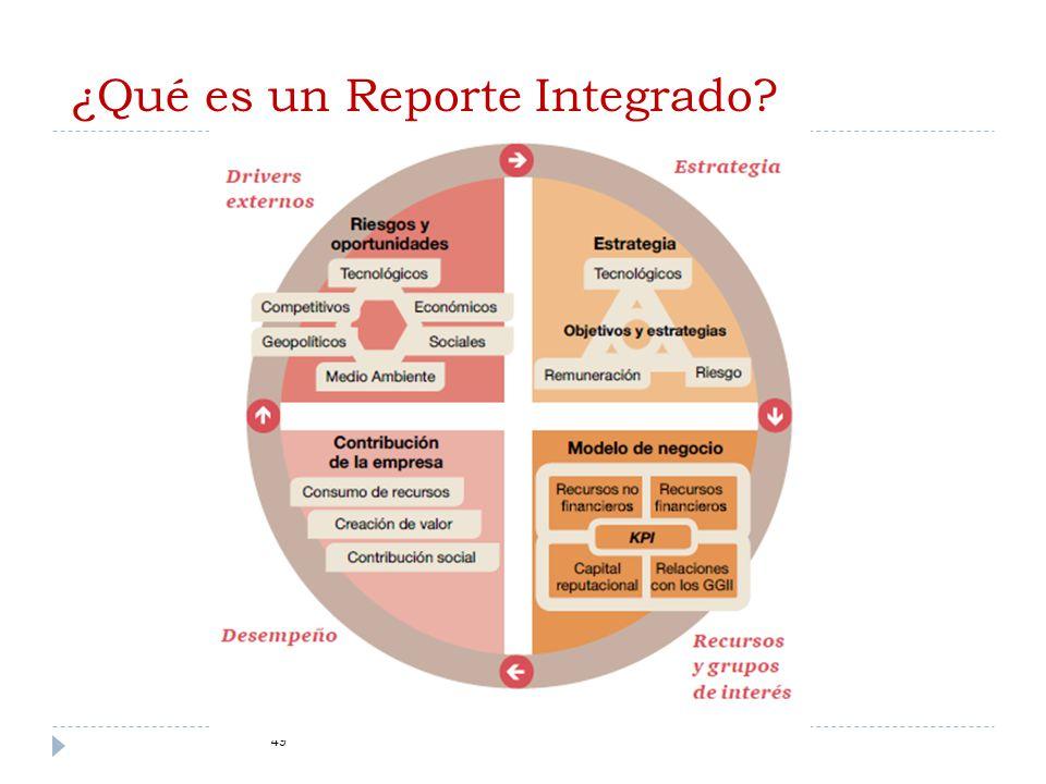 ¿Qué es un Reporte Integrado? 49