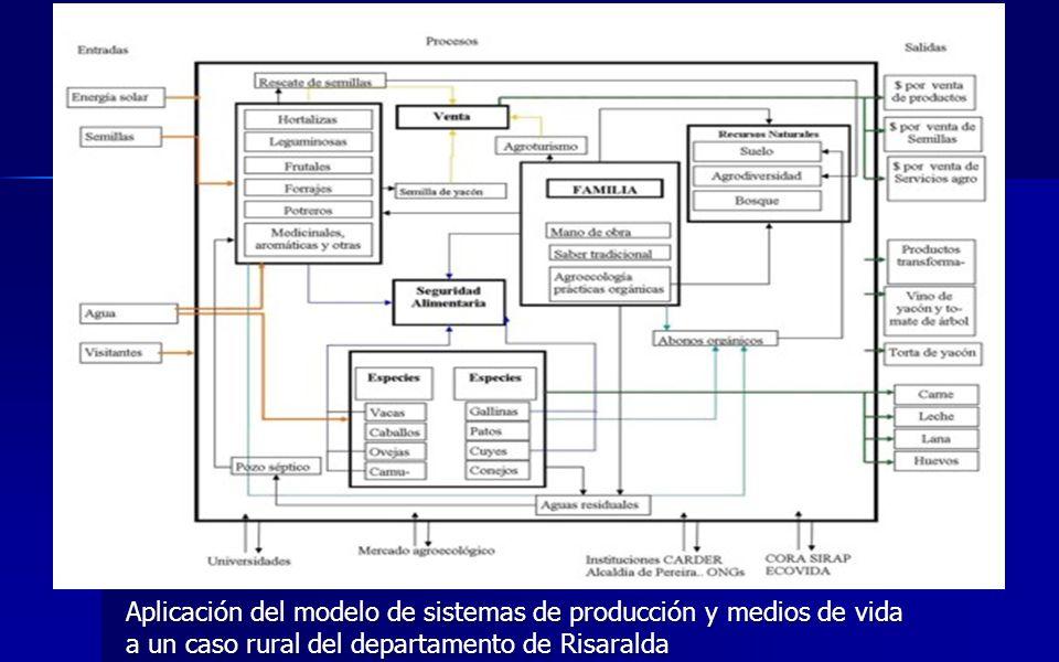 Aplicación del modelo de sistemas de producción y medios de vida a un caso rural del departamento de Risaralda