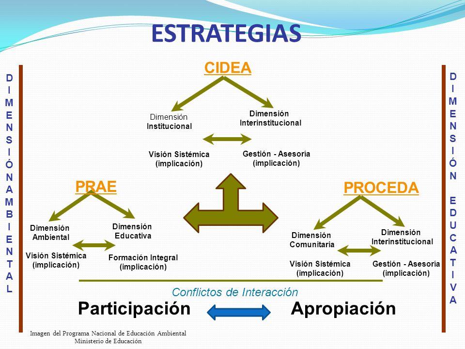 PRAE Dimensión Ambiental Dimensión Educativa Visión Sistémica (implicación) Formación Integral (implicación) Conflictos de Interacción ESTRATEGIAS CID