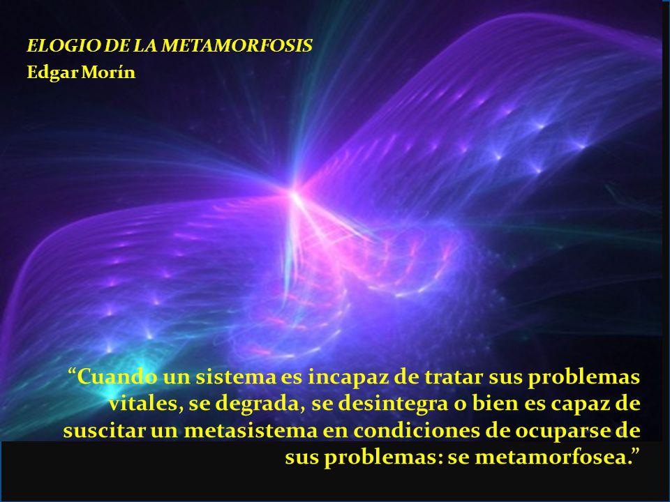 ELOGIO DE LA METAMORFOSIS Edgar Morín Lo probable es la desintegración.