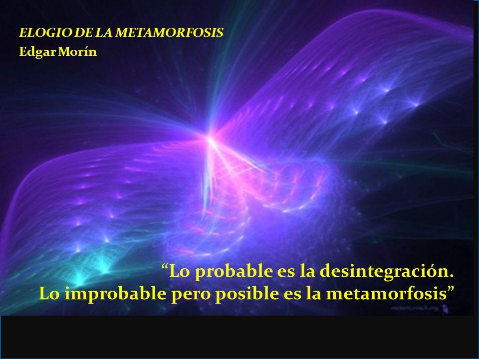 ELOGIO DE LA METAMORFOSIS Edgar Morín Lo probable es la desintegración. Lo improbable pero posible es la metamorfosis