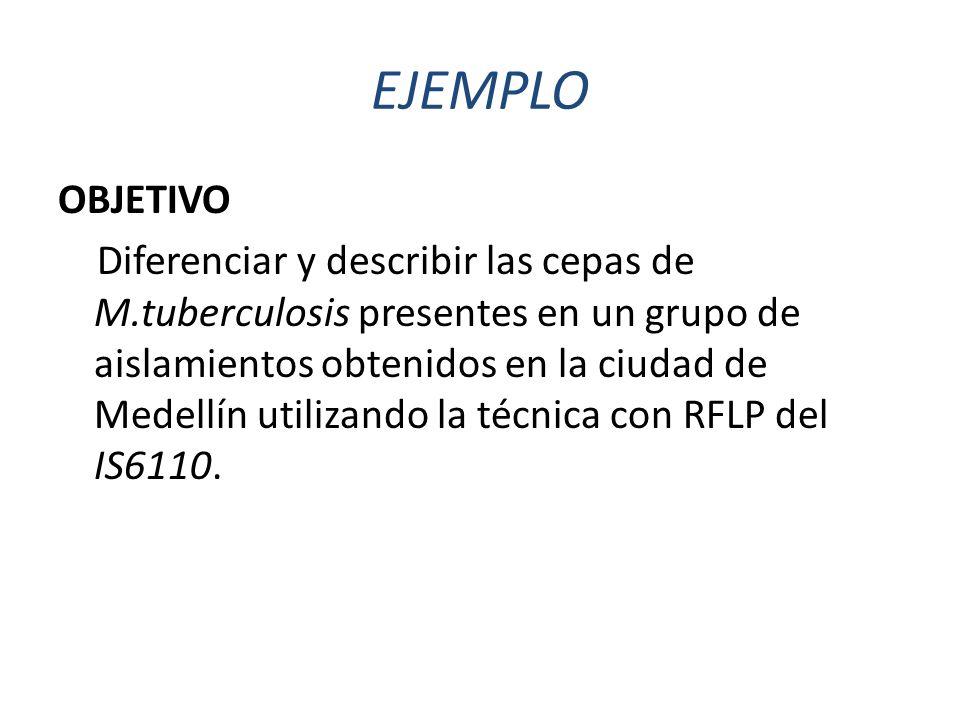 EJEMPLO OBJETIVO Diferenciar y describir las cepas de M.tuberculosis presentes en un grupo de aislamientos obtenidos en la ciudad de Medellín utilizando la técnica con RFLP del IS6110.