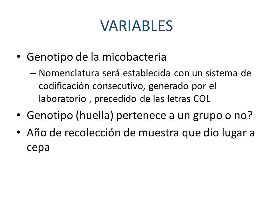 VARIABLES Genotipo de la micobacteria – Nomenclatura será establecida con un sistema de codificación consecutivo, generado por el laboratorio, precedido de las letras COL Genotipo (huella) pertenece a un grupo o no.