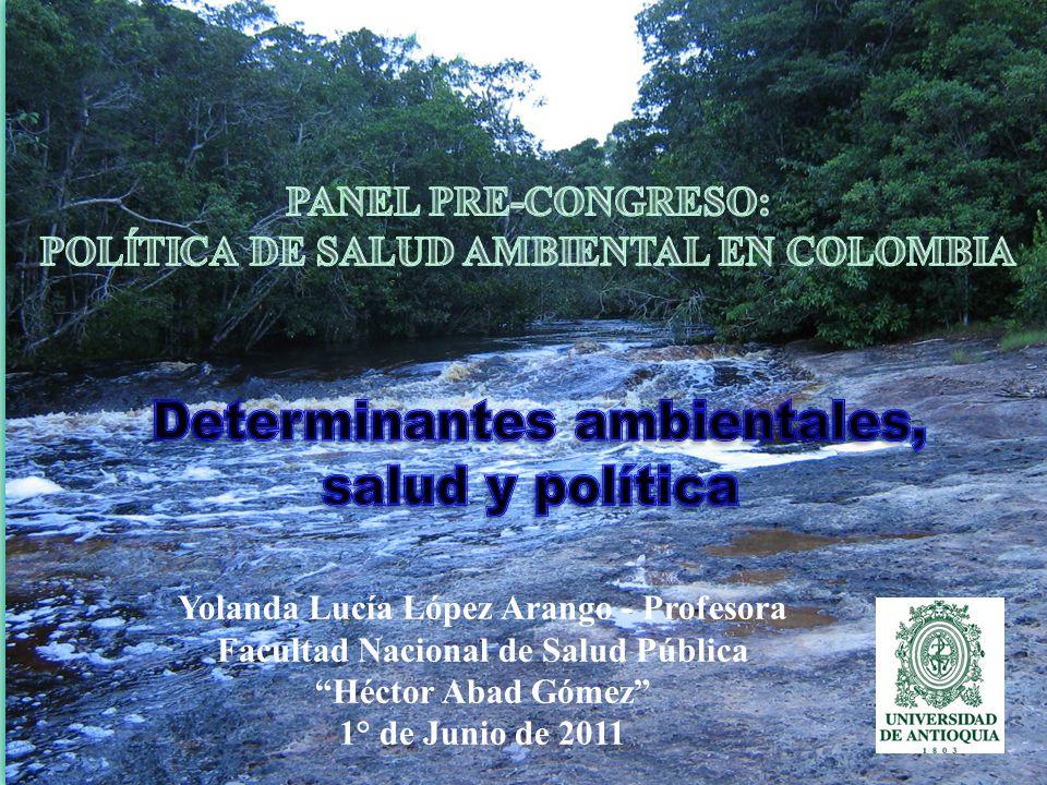 Yolanda Lucía López Arango - Profesora Facultad Nacional de Salud Pública Héctor Abad Gómez 1° de Junio de 2011