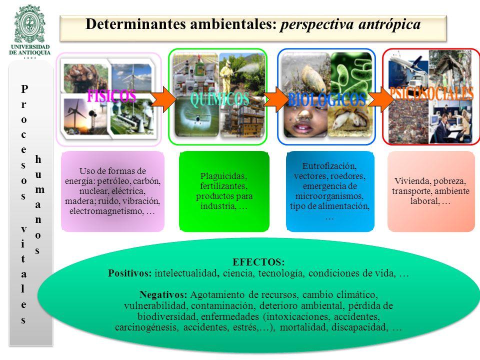 Márquez, G.De la abundancia a la escasez. En: Naturaleza en disputa.