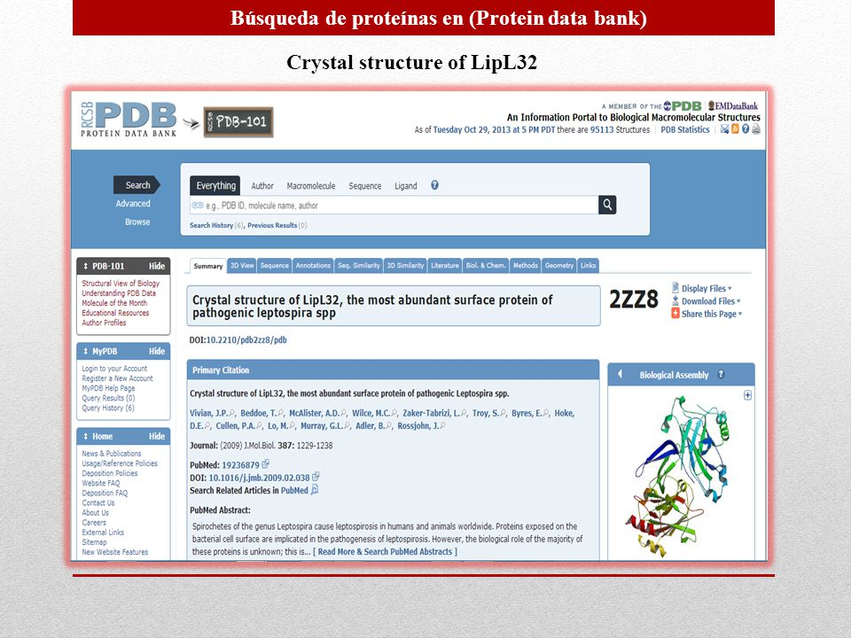 Búsqueda de proteínas en (Protein data bank) Crystal structure of LipL32