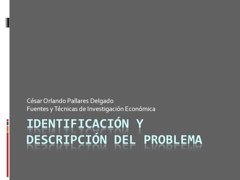 César Orlando Pallares Delgado Fuentes y Técnicas de Investigación Económica