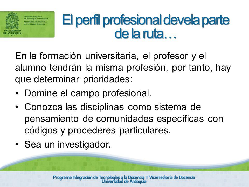 En la formación universitaria, el profesor y el alumno tendrán la misma profesión, por tanto, hay que determinar prioridades: Domine el campo profesio