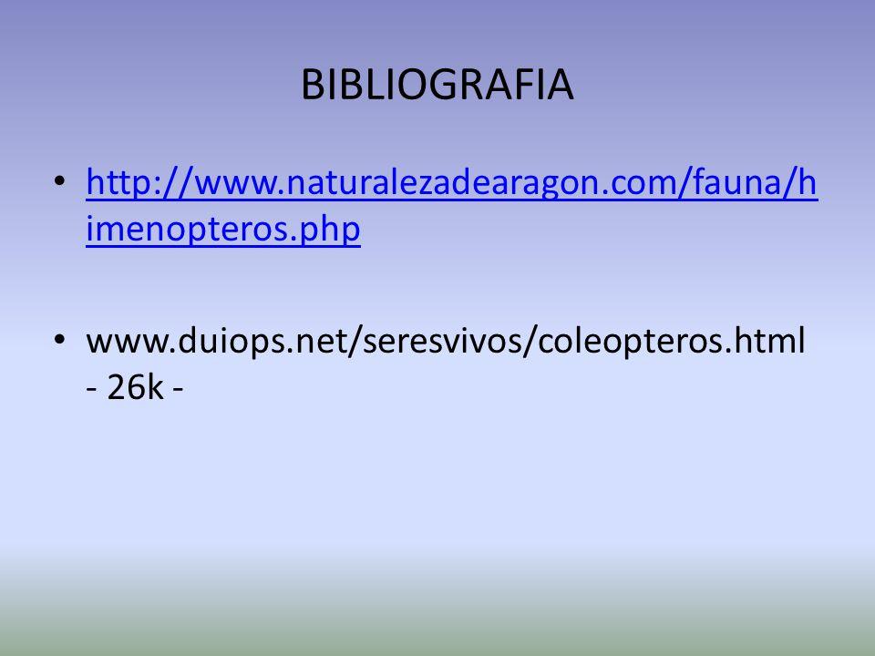 BIBLIOGRAFIA http://www.naturalezadearagon.com/fauna/h imenopteros.php http://www.naturalezadearagon.com/fauna/h imenopteros.php www.duiops.net/seresv