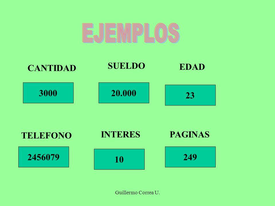 Guillermo Correa U. 3000 CANTIDAD 249 10 2456079 23 20.000 SUELDO EDAD TELEFONO INTERESPAGINAS