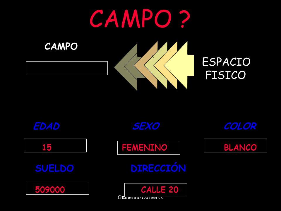 Guillermo Correa U. CAMPO ESPACIO FISICO EDAD SEXO COLOR SUELDO DIRECCIÓN 15 FEMENINO BLANCO 509000 CALLE 20 CAMPO ?