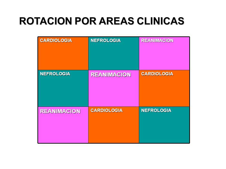 ROTACION POR AREAS CLINICAS NEFROLOGIACARDIOLOGIAREANIMACION CARDIOLOGIAREANIMACIONNEFROLOGIAREANIMACIONNEFROLOGIACARDIOLOGIA