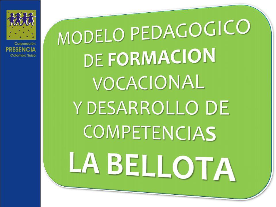 AGENTES EDUCATIVOS Maestros, Formadores, Educadores, Cuidadores NIÑO/JOVEN AGENTES COMUNITARIOS Familia, Escuela, Redes «En la Bellota se encuentra el Roble»