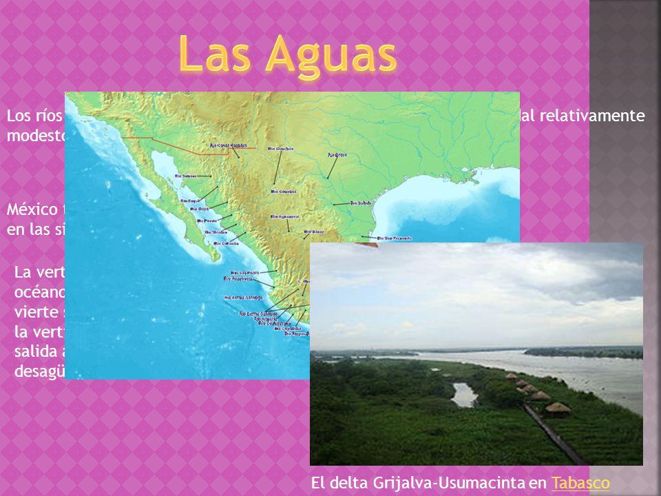 Los ríos mexicanos son en general cortos, innavegables y con un caudal relativamente modesto.