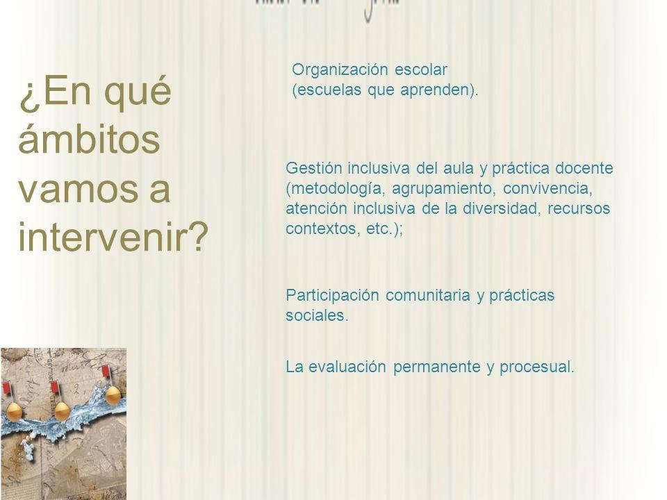 ¿En qué ámbitos vamos a intervenir? Participación comunitaria y prácticas sociales. Organización escolar (escuelas que aprenden). Gestión inclusiva de