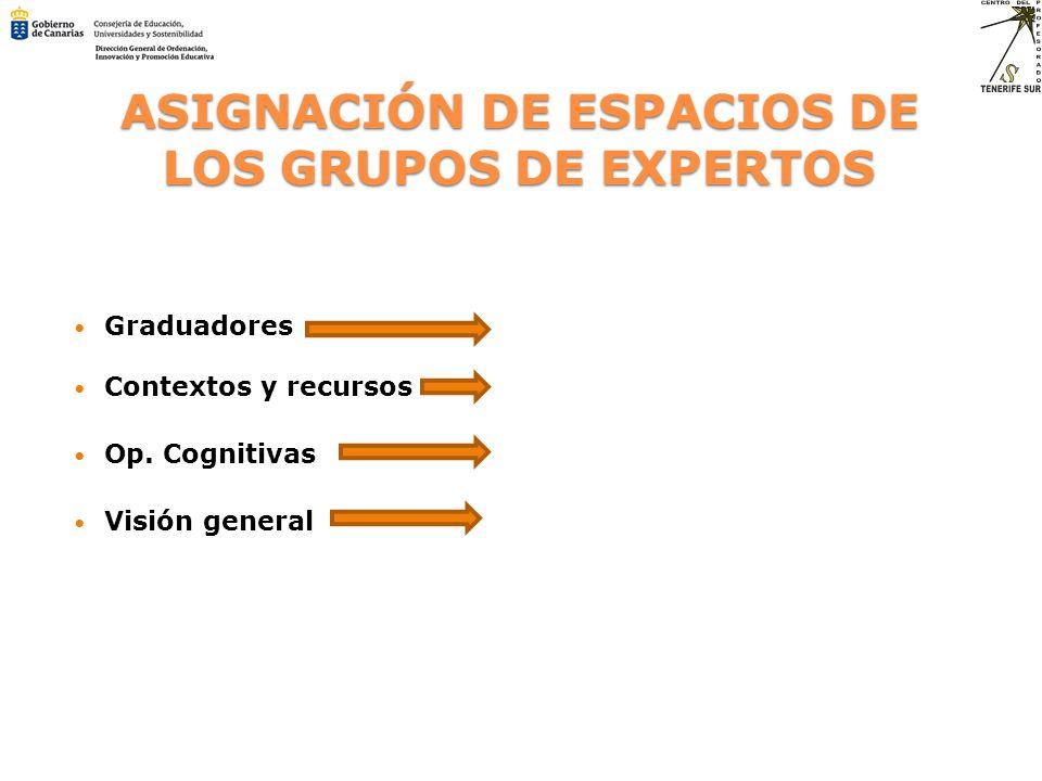 ASIGNACIÓN DE ESPACIOS DE LOS GRUPOS DE EXPERTOS Graduadores Contextos y recursos Op. Cognitivas Visión general
