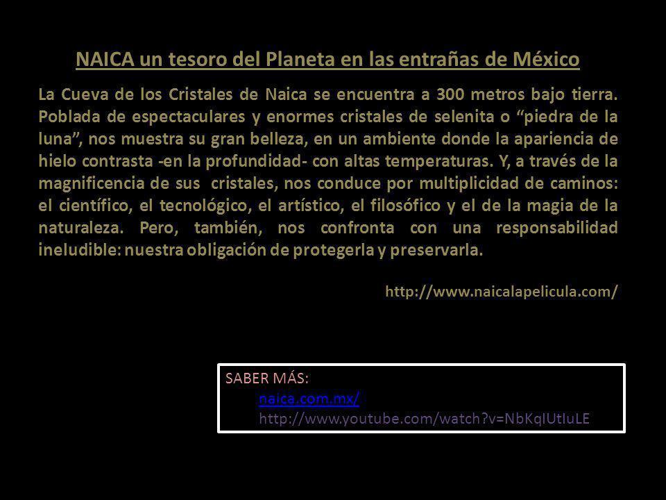 NAICA un tesoro del Planeta en las entrañas de México La Cueva de los Cristales de Naica se encuentra a 300 metros bajo tierra.