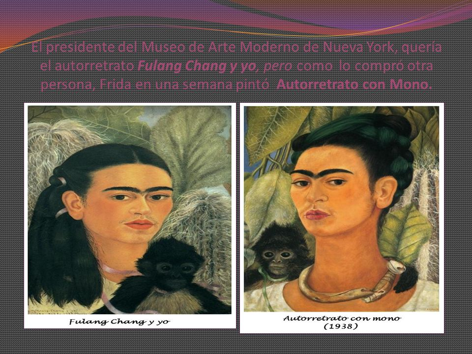 El presidente del Museo de Arte Moderno de Nueva York, quería el autorretrato Fulang Chang y yo, pero como lo compró otra persona, Frida en una semana pintó Autorretrato con Mono.
