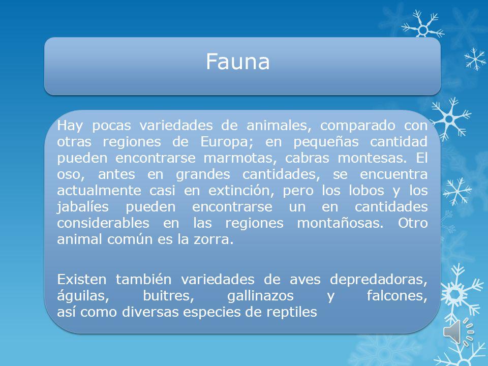 Flora La flora en las regiones central y bajas es típicamente Mediterránea. Las características de la vegetación es la existencia de olivos, algunas p