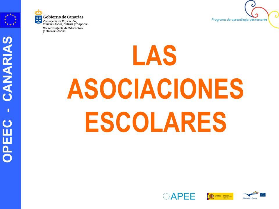 OPEEC - CANARIAS ¿Porqué participar en Asociaciones Escolares.