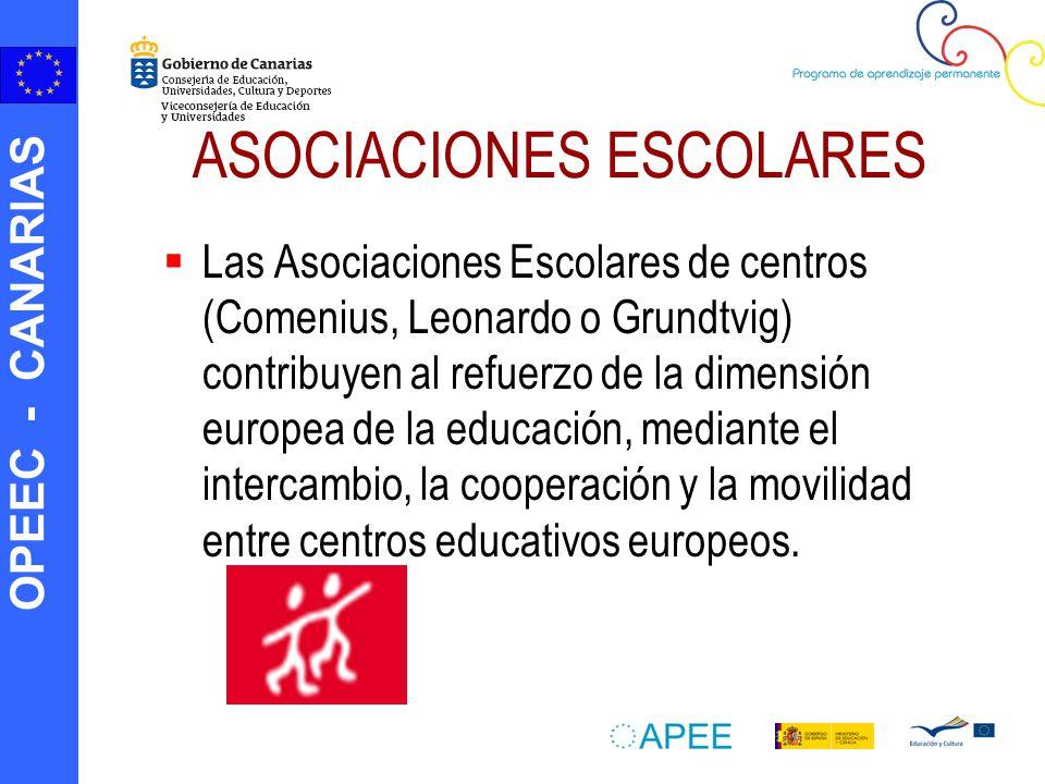 OPEEC - CANARIAS ASOCIACIONES ESCOLARES Las Asociaciones Escolares de centros (Comenius, Leonardo o Grundtvig) contribuyen al refuerzo de la dimensión