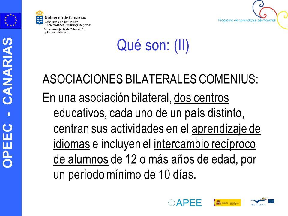OPEEC - CANARIAS Qué son: (II) ASOCIACIONES BILATERALES COMENIUS: En una asociación bilateral, dos centros educativos, cada uno de un país distinto, c