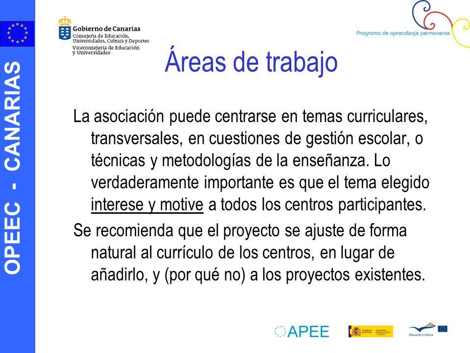 OPEEC - CANARIAS Desarrollo de actividades (I) ¿Qué se puede hacer en una Asociación Escolar.