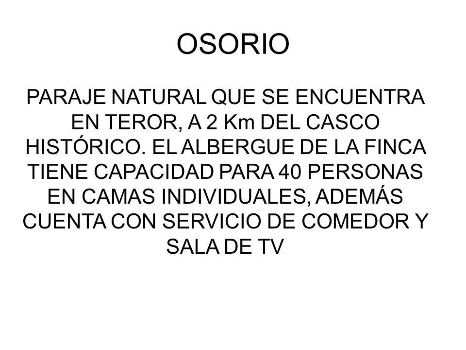 OSORIO PARAJE NATURAL QUE SE ENCUENTRA EN TEROR, A 2 Km DEL CASCO HISTÓRICO.