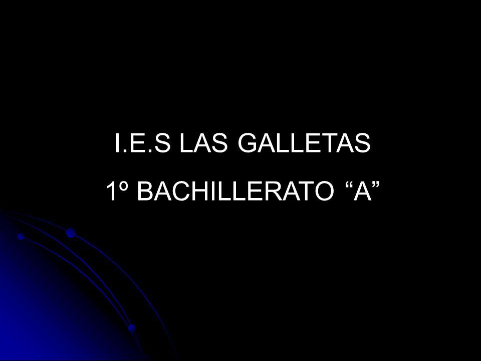 I.E.S LAS GALLETAS 1º BACHILLERATO A
