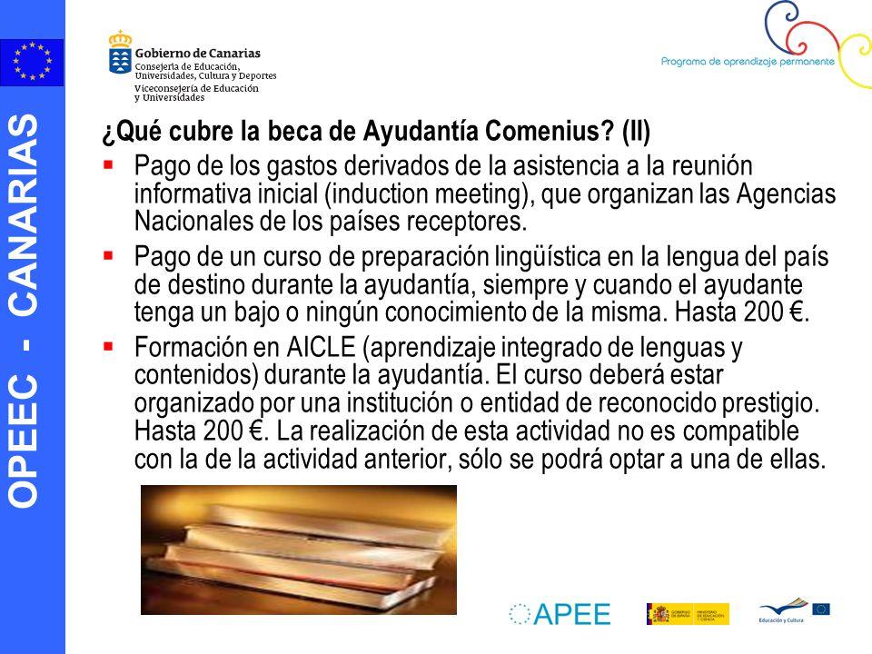 OPEEC - CANARIAS ¿Qué cubre la beca de Ayudantía Comenius.
