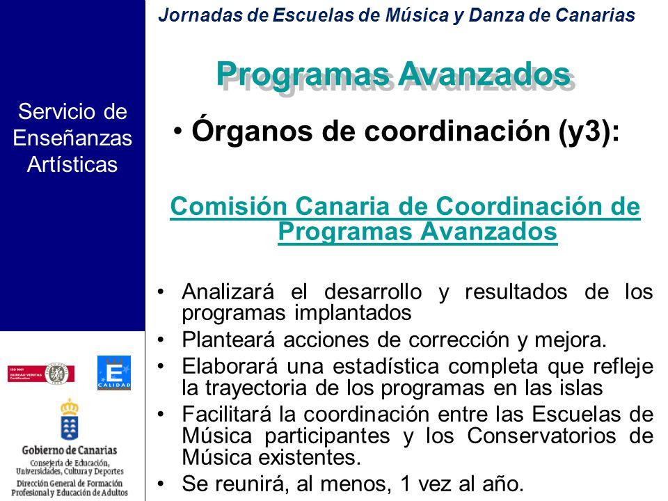 Servicio de Enseñanzas Artísticas Comisión Insular de Coordinación de Programas Avanzados –Órgano máximo de coordinación en cada isla –Compuesto por l