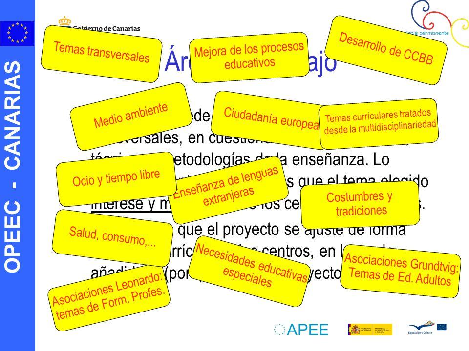 OPEEC - CANARIAS Áreas de trabajo La asociación puede centrarse en temas curriculares, transversales, en cuestiones de gestión escolar, o técnicas y metodologías de la enseñanza.