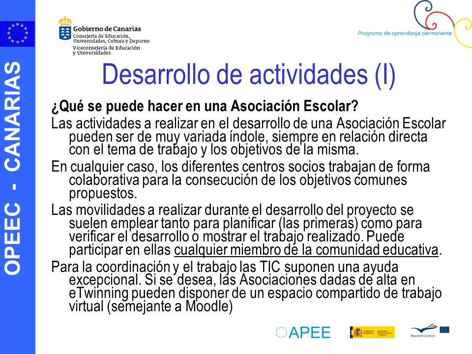 OPEEC - CANARIAS Desarrollo de actividades (I) ¿Qué se puede hacer en una Asociación Escolar? Las actividades a realizar en el desarrollo de una Asoci