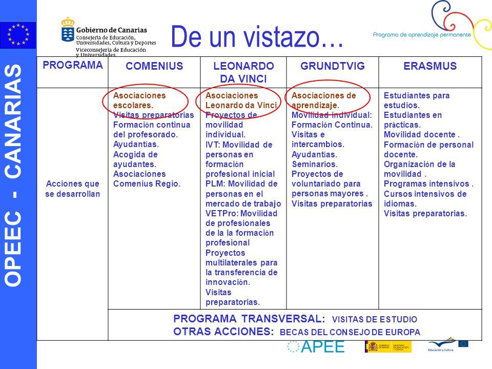 OPEEC - CANARIAS De un vistazo… PROGRAMA COMENIUSLEONARDO DA VINCI GRUNDTVIGERASMUS Acciones que se desarrollan Asociaciones escolares.