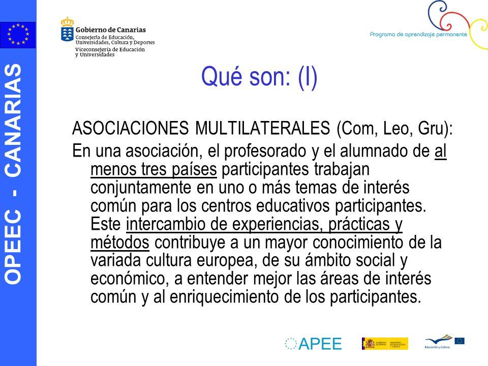 OPEEC - CANARIAS Qué son: (I) ASOCIACIONES MULTILATERALES (Com, Leo, Gru): En una asociación, el profesorado y el alumnado de al menos tres países par