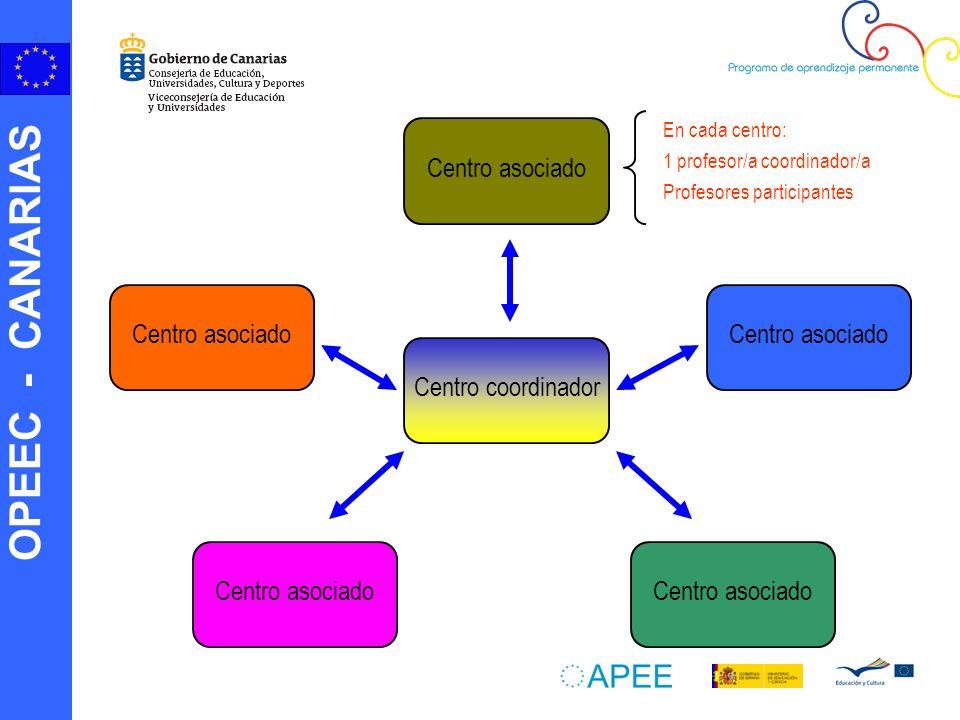 OPEEC - CANARIAS La comunicación Uno de los factores clave para el éxito de una Asociación Escolar es una comunicación entre los socios frecuente y eficaz.