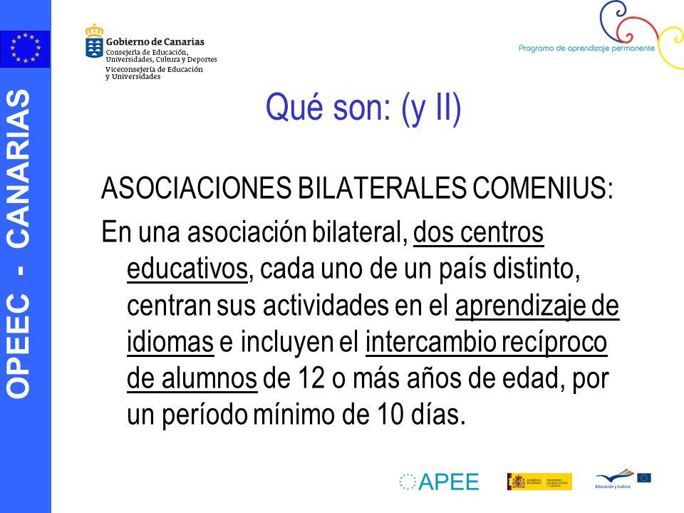 OPEEC - CANARIAS Qué son: (y II) ASOCIACIONES BILATERALES COMENIUS: En una asociación bilateral, dos centros educativos, cada uno de un país distinto,