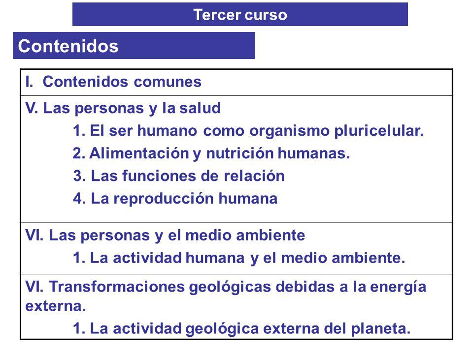 Tercer curso Contenidos I. Contenidos comunes V. Las personas y la salud 1. El ser humano como organismo pluricelular. 2. Alimentación y nutrición hum