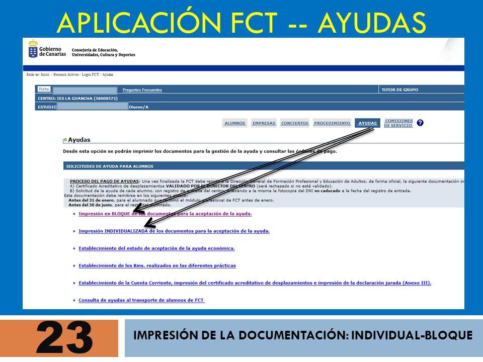 23 APLICACIÓN FCT -- AYUDAS IMPRESIÓN DE LA DOCUMENTACIÓN: INDIVIDUAL-BLOQUE