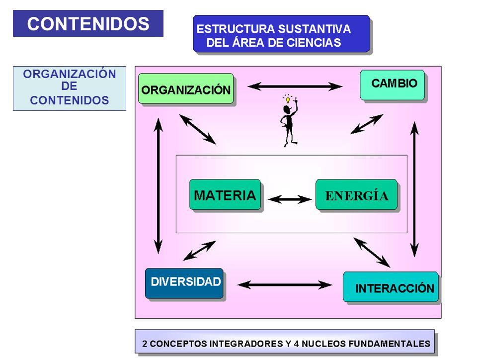 CONTENIDOS ORGANIZACIÓN DE CONTENIDOS