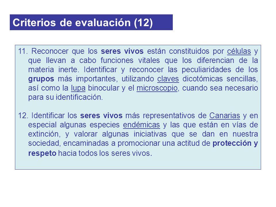 Criterios de evaluación (12) 11. Reconocer que los seres vivos están constituidos por células y que llevan a cabo funciones vitales que los diferencia
