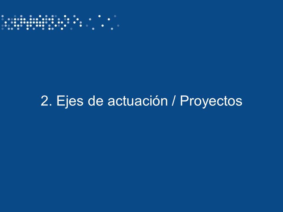 Identificación del autor/ título de la presentación13 2. Ejes de actuación / Proyectos