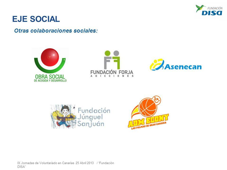 EJE SOCIAL Otras colaboraciones sociales: IX Jornadas de Voluntariado en Canarias 25 Abril 2013 / Fundación DISA