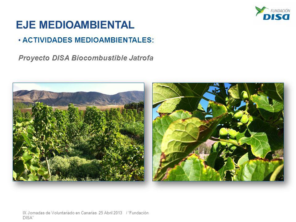 EJE MEDIOAMBIENTAL ACTIVIDADES MEDIOAMBIENTALES: Proyecto DISA Biocombustible Jatrofa IX Jornadas de Voluntariado en Canarias 25 Abril 2013 / Fundació