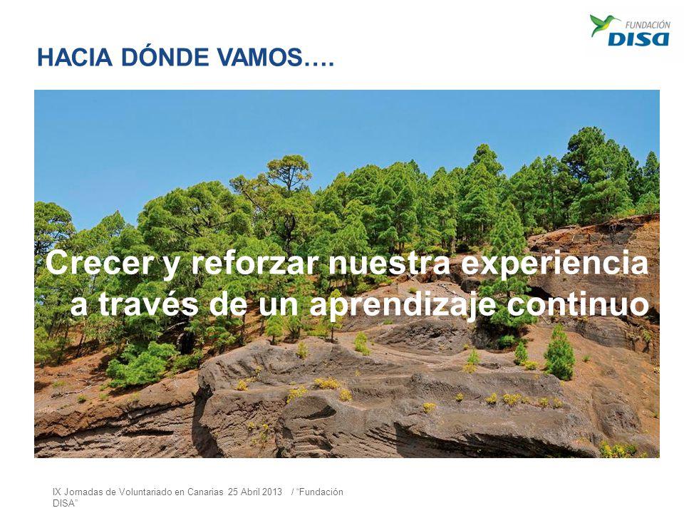 HACIA DÓNDE VAMOS…. Crecer y reforzar nuestra experiencia a través de un aprendizaje continuo IX Jornadas de Voluntariado en Canarias 25 Abril 2013 /