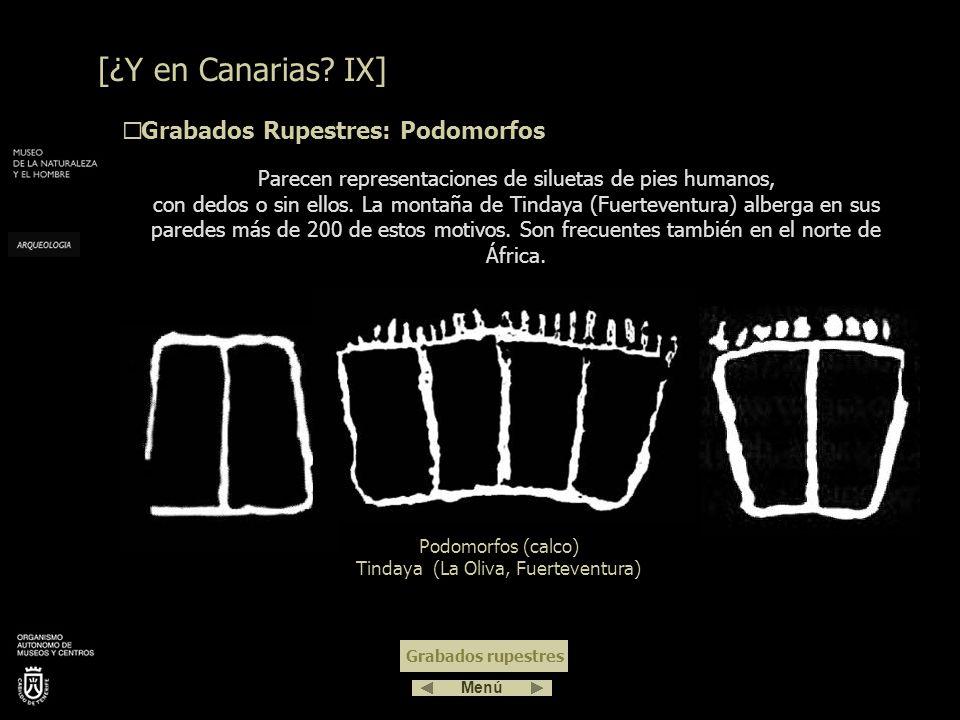 Representan animales: lagartos, peces, toros, caballos… Son escasos en el archipiélago. Zoomorfos (calco) Barranco de Balos (Agüimes, Gran Canaria) Zo